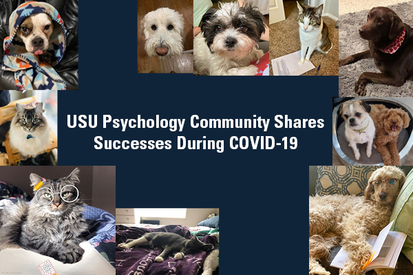 USU Psychology Community Shares Successes During COVID-19
